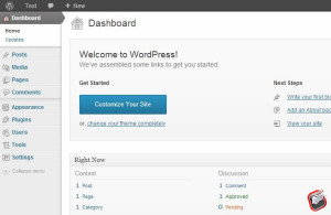 How to install wordpress on localhost wamp server2